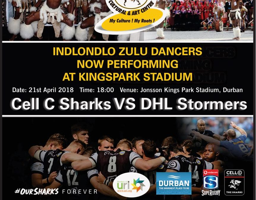 Indlondlo Zulu Dancers Performing for Cell C Sharks VS DHL Stormers Match